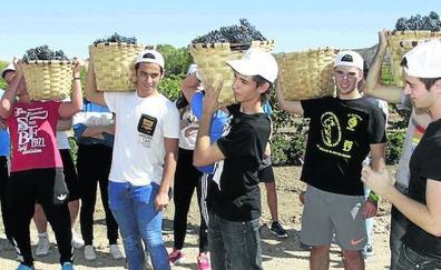 Seis colegios de la comunidad se alzan con los premios del concurso 'Mi primera vendimia'