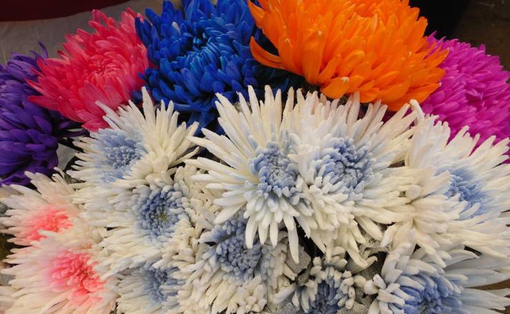 Flores Madrid, siempre a tu lado