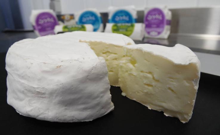 Zarandiel: innovación en la leche de oveja