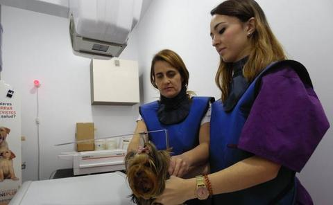 Clinica Veterinaria San Isidoro