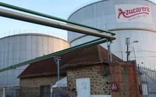 Azucarera rcibe más de 1,2 millones de toneladas de remolacha, el 70,5% del aforo estimado