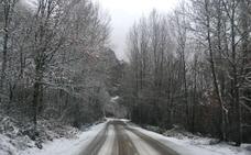 La nieve impide circular a camiones en varias carreteras de la provincia de León