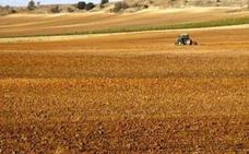 La unidad en el sector y la defensa del agricultor a título principal, propuestas de UPA-COAG en la campaña electoral