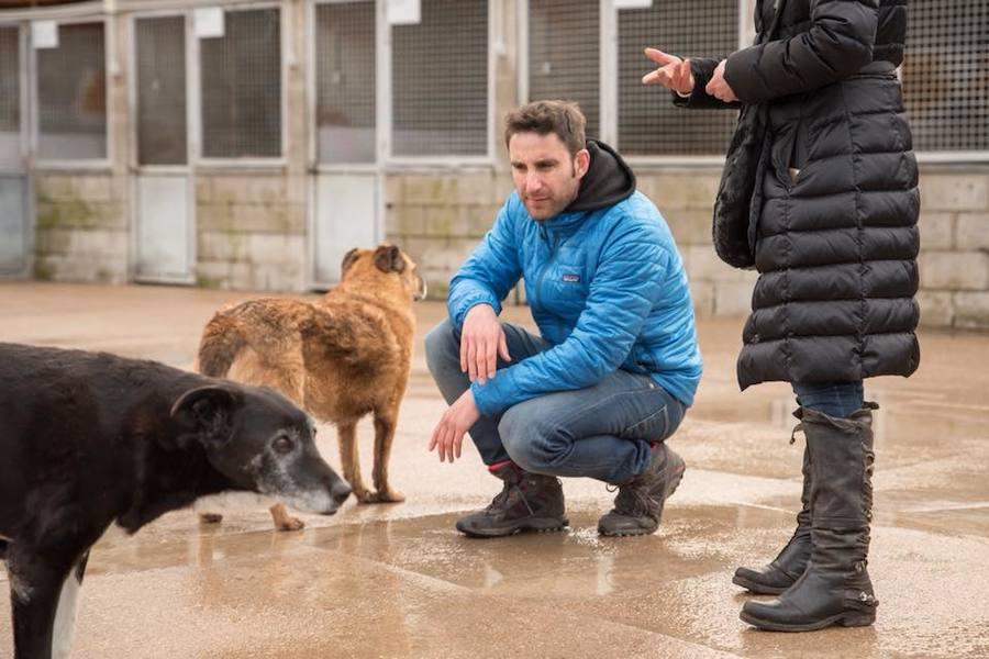 Dani Rovira visita la Protectora de León