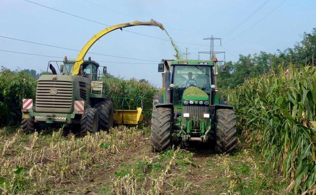 9765617c1498a La Junta ofrecerá asesoramiento a 7.000 agricultores para mejorar la ...
