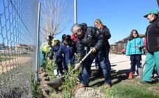 Los niños de los tres colegios de La Bañeza plantan más de 100 árboles