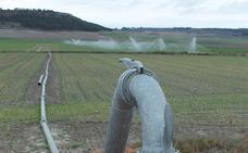 El campo de Castilla y León impulsa casi 56.000 hectáreas de riego en la última década