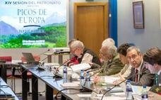 El Patronato del Parque de Picos pondrá en marcha un protocolo para eliminar lobos