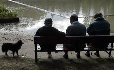Así quedarán las diferentes pensiones con la nueva subida del Gobierno
