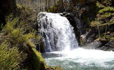Los Argüellos, un ejemplo de ecosistema de montaña