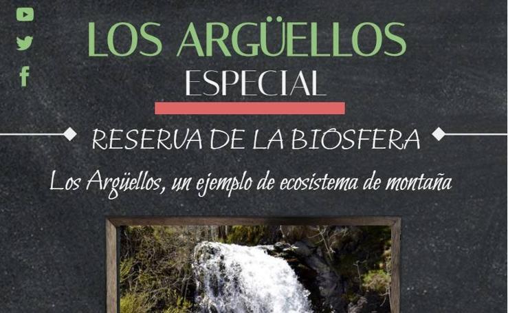 Especial Los Argüellos