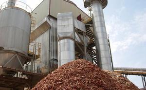 Forestalia defiende el proyecto «impecable» de la planta de biomasa de Cubillos del Sil «tanto técnica como administrativamente»
