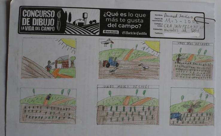 Trabajos de 6º de Primaria en la modalidad de cómic del II Concurso de Dibujo y Cómic 'La vida del campo'