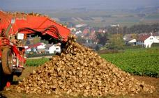 Los sindicatos de la industria azucarera se movilizarán en La Bañeza para reclamar mejoras en el convenio y en las condiciones laborales