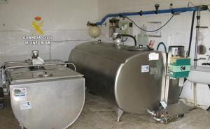 Investigan a tres personas por falsear inspecciones en más de 180 explotaciones ganaderas de producción de leche de León