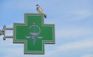 Las farmacias de Castilla y León sustituirán los fármacos con valsartán por otros no afectados por la alerta