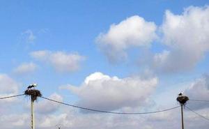 León aconseja evitar el sol y el ejercicio en las horas centrales del día como prevención frente al ozono