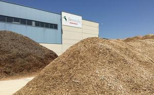 La Junta autoriza la inversión de 42 millones en la planta de biomasa de Cubillos del Sil que generará hasta 600 empleos