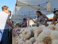 Feria del Ajo de Veguellina de Órbigo
