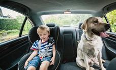 ¿Con cuántos grados fuera del coche puede sufrir un niño un golpe de calor dentro?