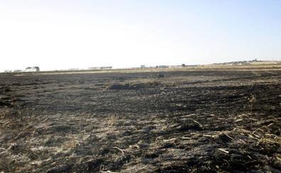 No se puede quemar rastrojos en Castilla y León