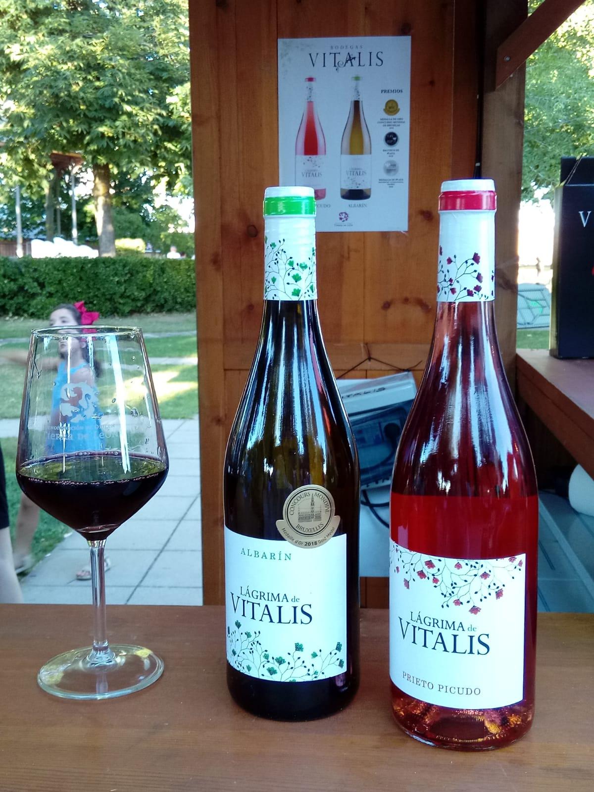 El vino reina en Valencia de Don Juan