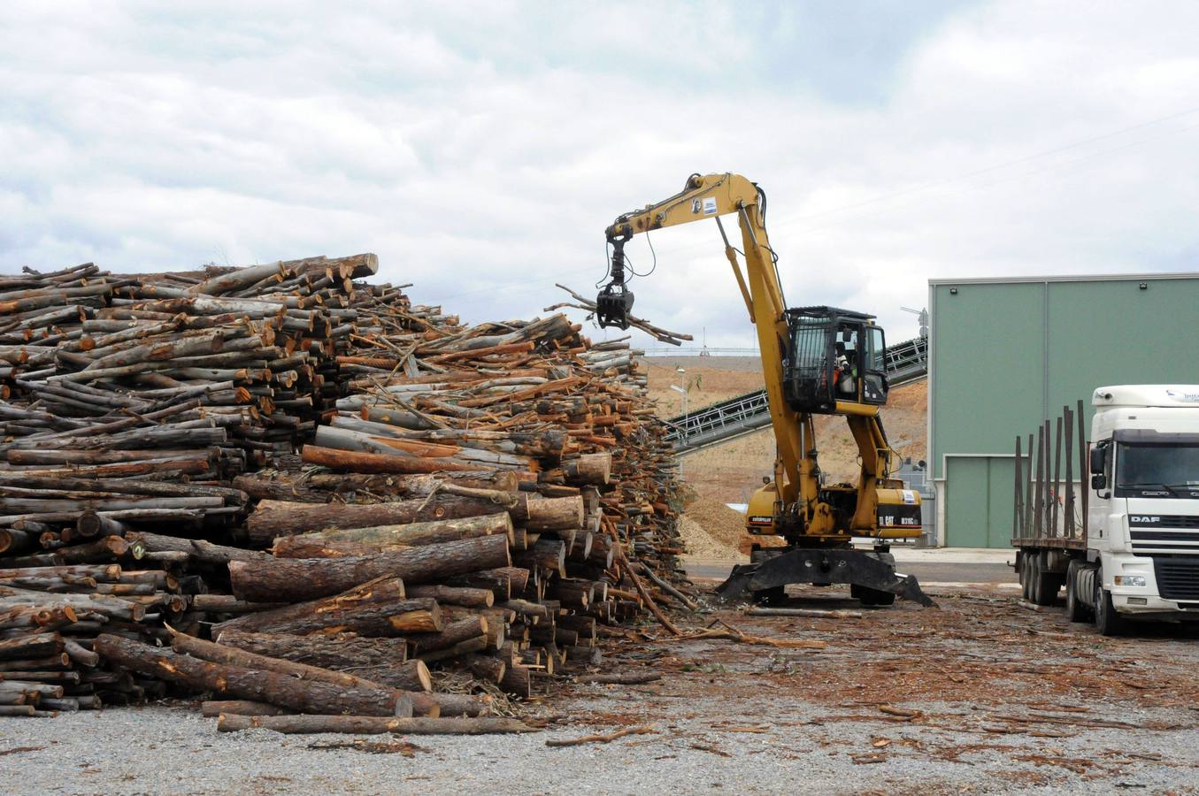 La Junta aprueba el proyecto de la planta de biomasa de Forestalia en Cubillos con 200 empleos