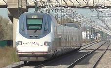Los trenes Ave y Larga Distancia de Renfe tuvieron en julio la mayor demanda de su historia