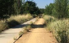 Denuncian el mal estado del paseo del río a la altura de Puente Castro y Mercaleón