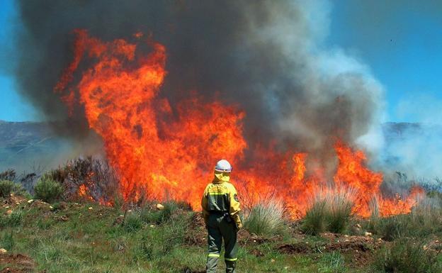 Uno de los incendios que hay activos en Castilla y León./Junta de Castilla y León