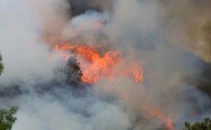 La organización WWF vincula el auge de incendios en León con la desertización del mundo rural