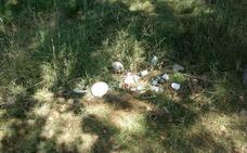 El PP de San Andrés exige la «limpieza urgente» del Valle de Santiago de Trobajo del Camino