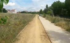 Ciudadanos reclama la limpieza urgente de los carriles de ocio del Torío