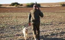 La media veda se inicia de forma «irregular» en Castilla y León a pesar de «las buenas perspectivas»