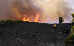 Un incendio de madrugada en Bembibre calcina media hectárea de pasto