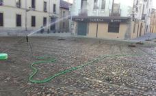 El Ayuntamiento quiere recuperar el 'verdín' de la Plaza del Grano aplicando riego por aspersión