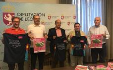 La III Copa Diputación de Pádel promociona el deporte en la provincia