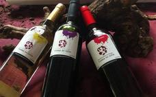 La DO Tierra de León participa en el primer 'Duero International Wine Fest' de Burgos