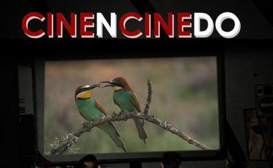 El 'Cinencinedo' celebra una nueva edición en La Baña