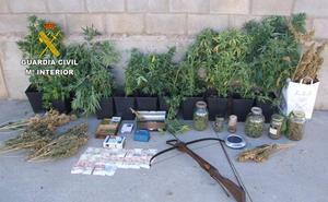 La Guardia Civil detiene a tres personas e investiga a dos más por cultivar marihuana en La Robla y el Páramo