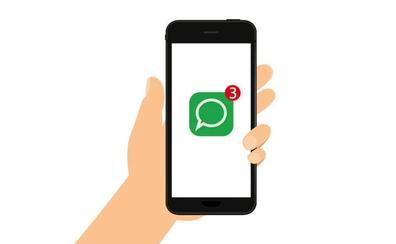 El sindicato de profesores ANPE pide a los padres «respeto» para los docentes en los grupos de Whatsapp