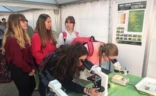 Los alumnos de la Asunción aprenden divirtiéndose gracias a Expociencia