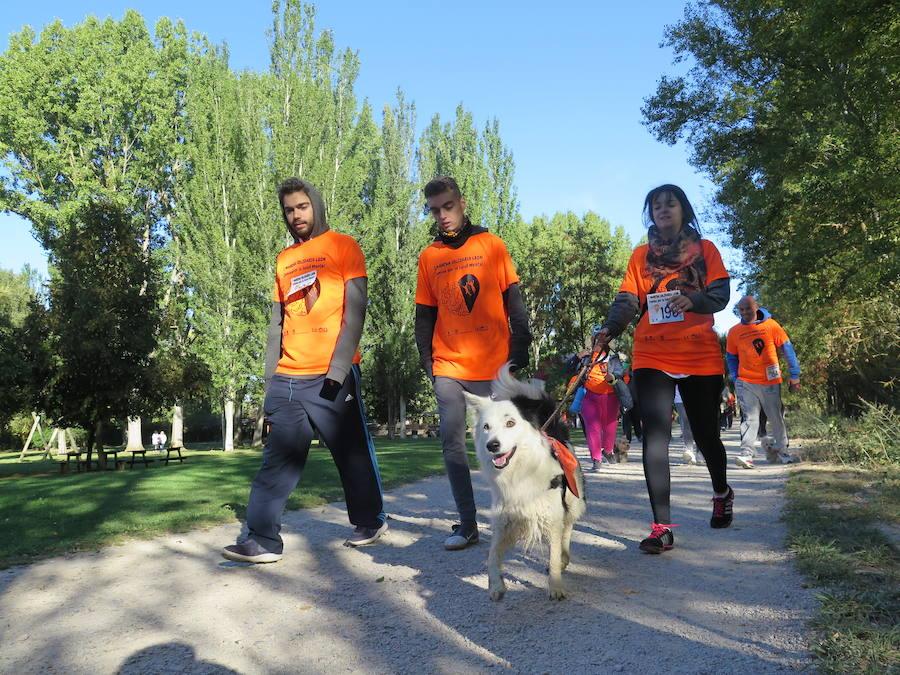 I Marcha Solidaria de Alfaem