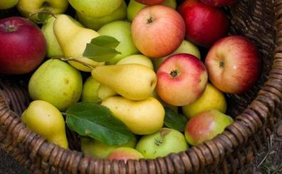 Calendario de temporada: Qué frutas comer en cada mes del año