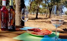 Vile La Finca, el vino como experiencia