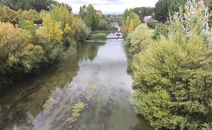 UPL exige a Silván que retome los acuerdos para la limpieza del río Bernesga a su paso por León