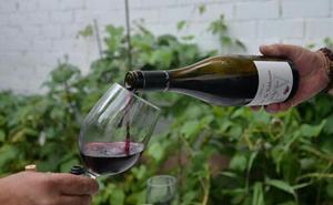 La Junta refuerza la promoción del enoturismo con la creación de la marca 'Rutas del vino Castilla y León'