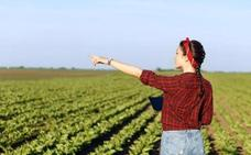 La Diputación homenajeará a la mujer rural con la entrega los premios Madreña, Arroba y Raíces el día 20 en Villafranca
