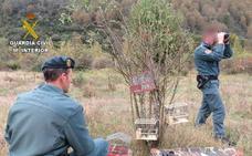 La Guardia Civil investiga a un varón por la muerte de un animal doméstico y denuncia a otro por la caza de seis jilgueros