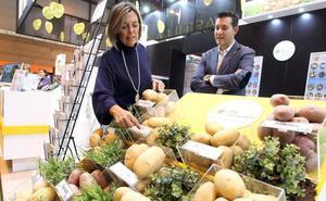 El sector hortofrutícola de la Comunidad facturó 500 millones en 2017 y exportó por 85